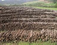 PALANQUES PLÁSTICOS  RECICLADOS - produto ecologicamente correto - PARA CERCAS, ESCORAS, ETC.