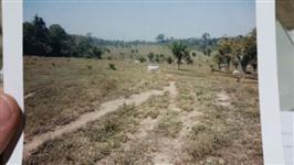 Fazenda Seringal Boa Vista