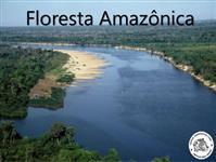 Sitio em Candido de Abreu - PR com 72,60 ha