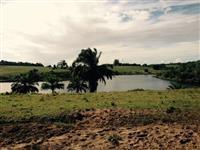 fazenda de pecuaria na regiao de porto seguro bahia