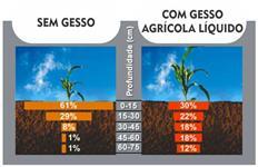 GESSO AGRÍCOLA LÍQUIDO (25% DE ENXOFRE E 10% DE CÁLCIO) FRETE GRÁTIS