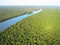Venda de 30 mil hectares em Parque Nacional com ICMbio