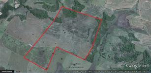 Fazenda Prox Araçatuba / Aracangua - 41 Alqueires (99,22ha)