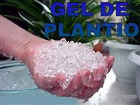 GEL DE PLANTIO (Polímero com alta capacidade de retenção de água)