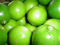 Limão taiti melhor qualidade possÍvel ,  preços ,negociamos .FORNEMOS ANO TODO