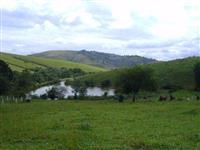 Sítio em Rio Branco do Sul com 7alqueires.