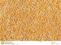 Vendo milho