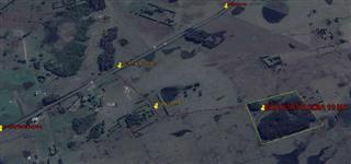 Mato para corte Eucalipto Alba 9 anos, 12 hectares.