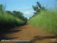 Fazenda em Conceição do Tocantins - TO com 434 hectares.
