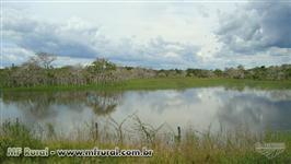 Fazenda em Pacajas - PA com 278.000 hectares