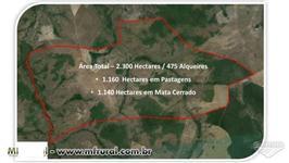 Fazenda Dupla Aptidão (Agricultura + Pecuária) - Tocantins