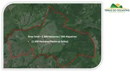 Região Norte do Tocantins - Soja e Gado