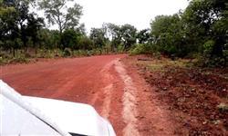 Fazenda para pecuária em Araguari - MG com  250 hectares.