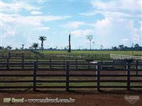Fazenda a venda com 2.600 hec com 1.100 hec aberto, Boca do Acre-AM