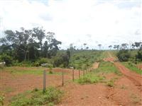 Vende-se òtima Fazenda com 9.890 ha com 4.800 ha Aberto