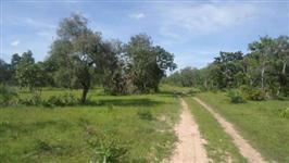 FAZENDA TOCANTINS - 498,88 ha - 7 km ASFALTO - 20 km CIDADE - 100% PLANA
