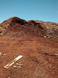 Biomassa, Cavaco e lenha