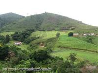 Fazenda em Bom Jardim  - MG com 309 hectares.
