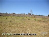 Fazenda em Monte Alegre de Minas,111 hectares, permuto