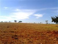 Fazenda plana e sem reserva no Prata, Triângulo Mineiro