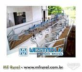 ORDENHADEIRAS WESTMILK - CANALIZADA CLASS - PULSADOR ELETRONICO - 04