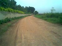 Encarregado para Administração de Fazenda com área de plantio de grãos e ovinos