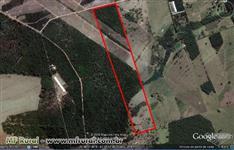 Sítio de 8,47 hectares, com água a 5 km de São Carlos-SP