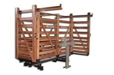 Balança bovina 1500 kg usada