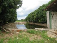 Fazenda Ipanguassu/RN , 55 hectares