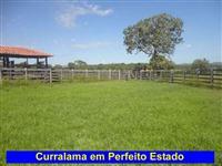 Fazenda Plana muito boa no município de Paranã - TO. Estrutura completa