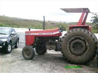 Trator Massey Ferguson 295 4x2 ano 91
