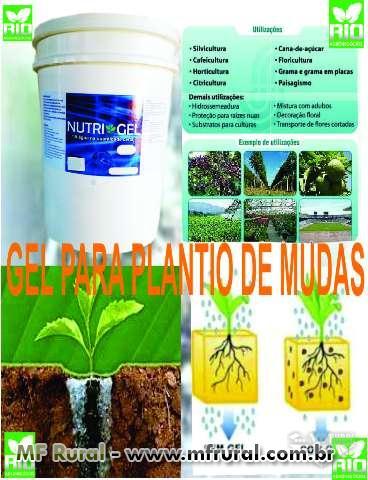 GEL PARA PLANTIO DE CAFÉ, EUCALIPTO,PINUS,NATIVAS,GRAMAS,CITRUS , FRUTAS