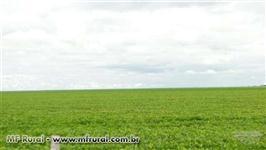 Fazenda de 4000 ha na COACERAL