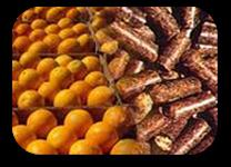 Polpa Cítrica ensacado ou á granel