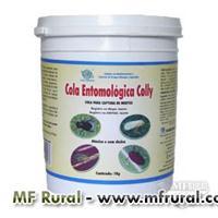 Cola Entomológica - Pega-Mosca, Pulgão, Formiga, Barata e outros insetos - 1 Kg