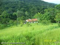 Fazenda em Pirenópolis Goiás com 121 ha.