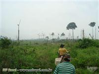 Fazenda em Tucumã-PA com 600ha