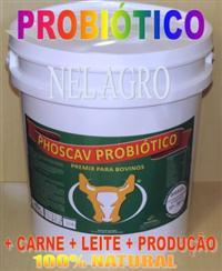 PROBIÓTICOS PHOSCAV PROBIÓTICO + CARNE + LEITE + SAÚDE AO REBANHO- BALDE DE 20KG