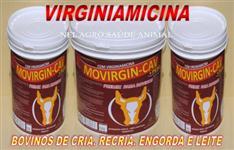VIRGINAMICINA E MONENSINA SÓDICA É MOVIRGIN-CAV + PESO É BOI GORDO - BALDE DE 05