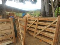 Madeira serrada de eucaliptos dormentes pranchas e regua e Porteiras