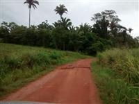 Sul do Pará, entre Xinguara e Rio Maria