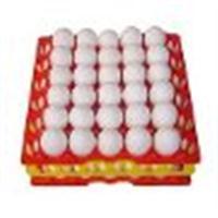 Bandeja para transporte de Ovos Galinhas Ornamentais 5 Unidades