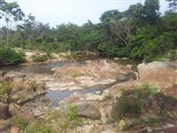 Fazenda 66 hectares em Monte Alegre de Goias