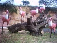 Esculturas De Animais Em Tamanhos Naturais Laminados em Fibra de Vidro