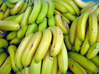 Banana Nanica e Prata