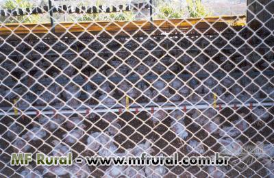 Maquina para Fabricar Telas Aviario alambrado sitios fazenda escolas Tela arame