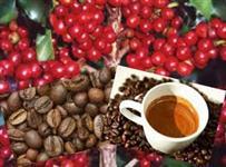 CAFÉ TORRADO E MOÍDO (Direto do produto)