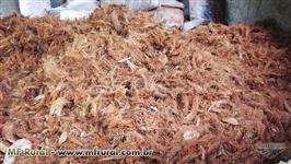 Casca de coco seco triturada