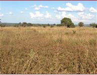 Fazenda em Barra do Garcas