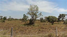 ÀREA  DE 1.070 ha